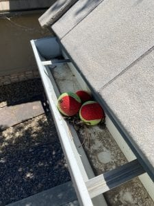 gutter cleaning near me, gutter cleaners near me, local gutter cleaners, top gutter cleaners, gutters with tennis balls in them